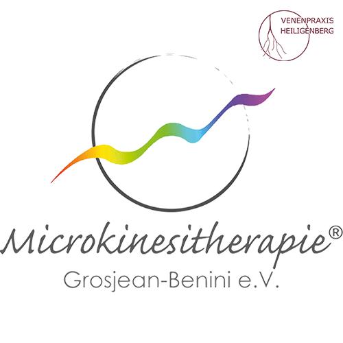 Link: Microkinesitherapie